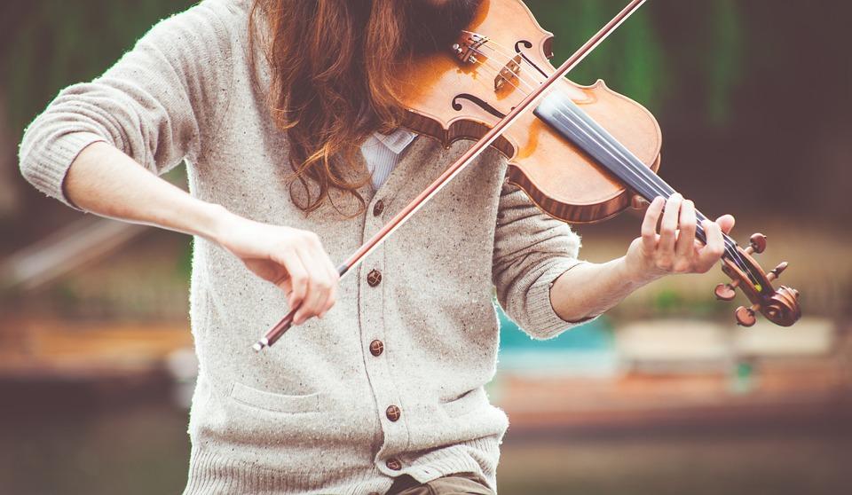 Concert, Music, Musical Instrument, Musician
