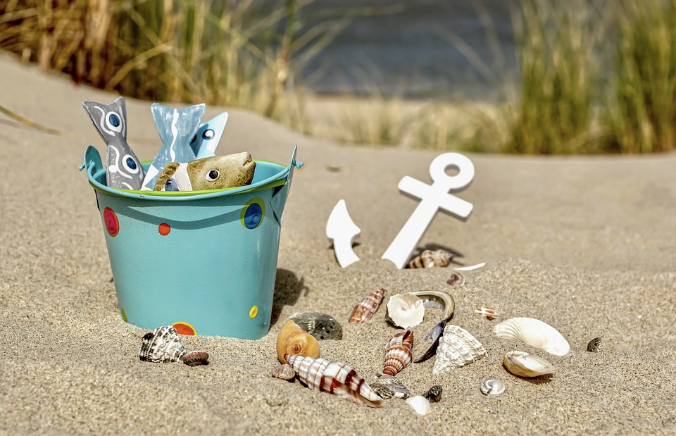 Summer, Vacations, Sea, Sand, Water, Ocean, Mussels