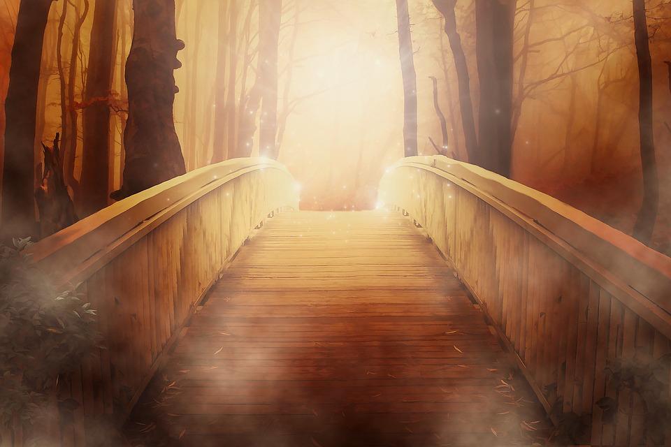 Bridge, Golden, Light, Mystical, Dramatic, Woods