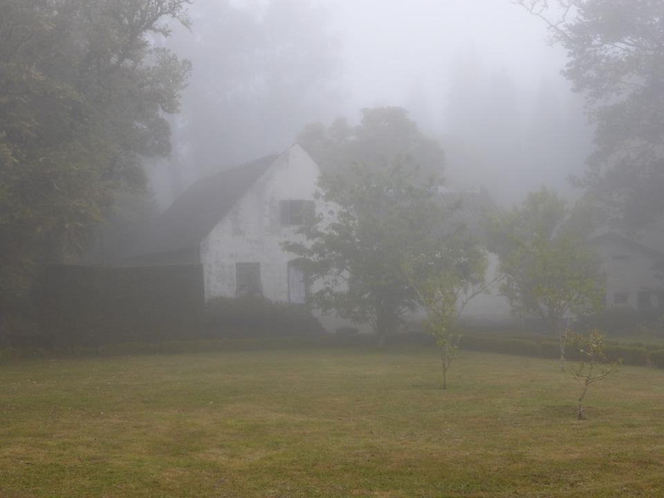 Fog, Mood, Home, Leave, Mystical, Gespentisch, Lonely