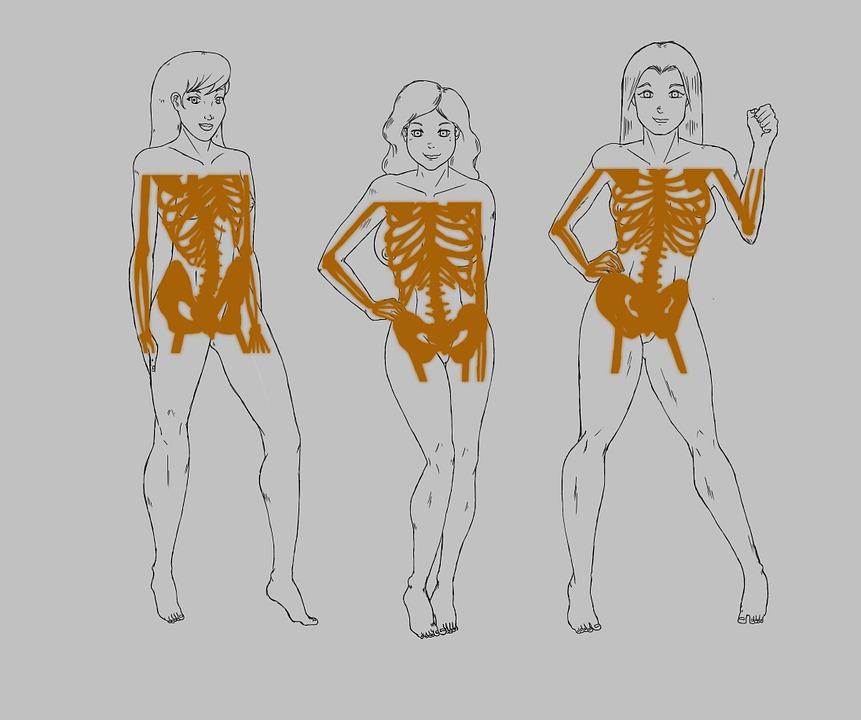 Free photo Naked Stub Curves X-ray Drawing Woman Figure - Max Pixel