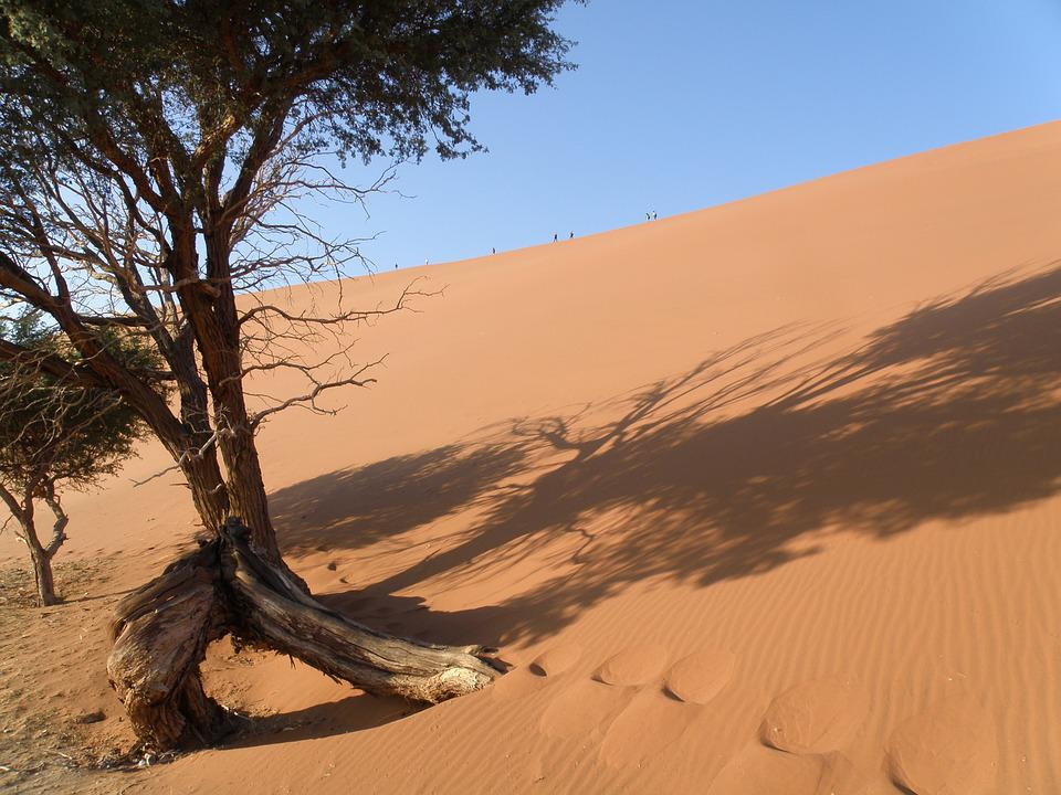 Dune, Namibia, Desert