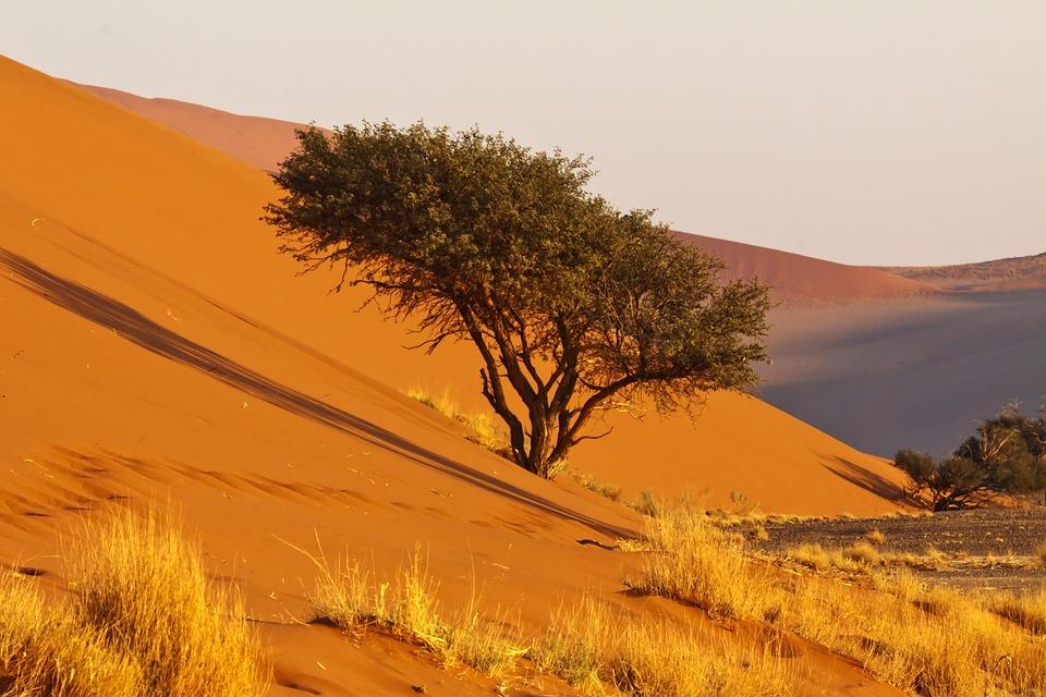 Africa, Namibia, Namib Desert, Nature, Dry, Sand