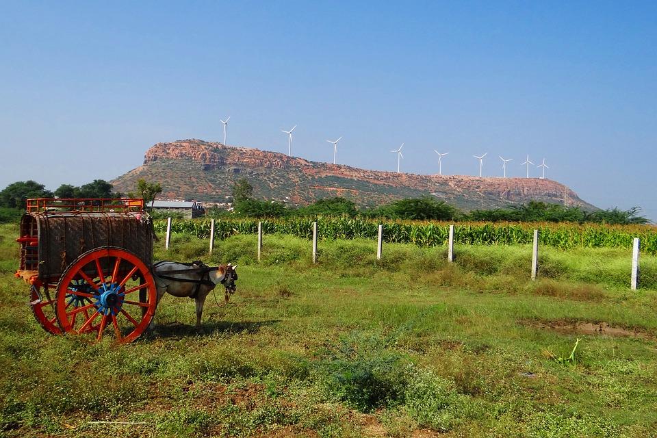 Nargund Hill, Horse Cart, Wind Turbine, Karnataka