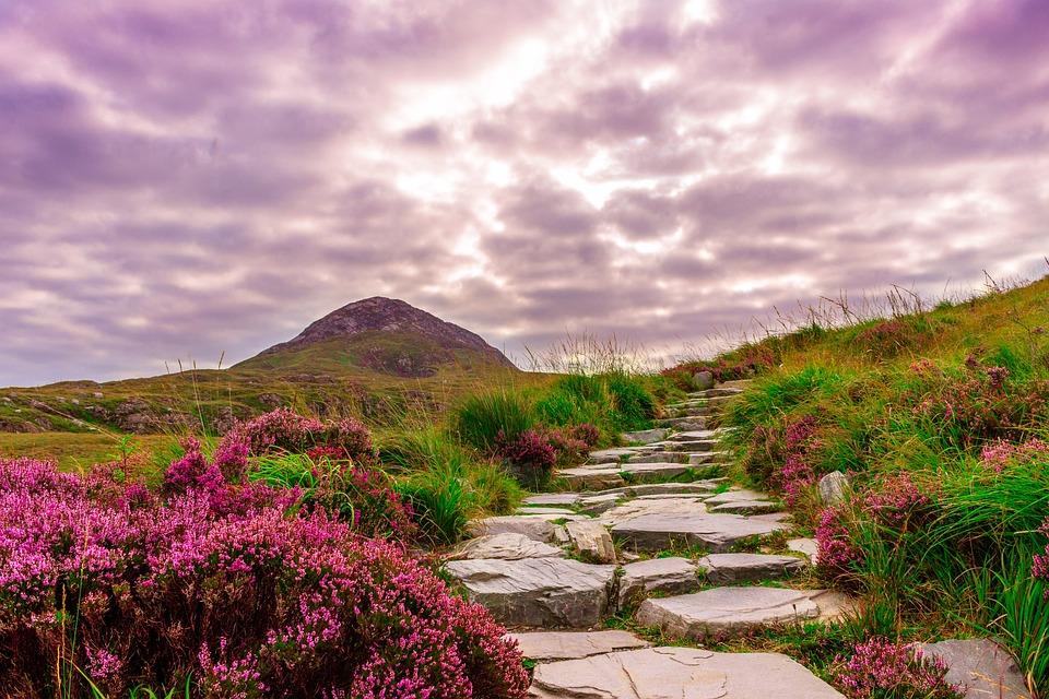 Ireland, National Park, Hiking, Away, Steinweg, Stones