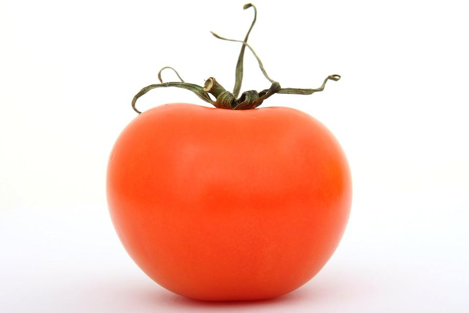 Cherry, Fresh, Leaf, Natural, Organic, Plant, Red