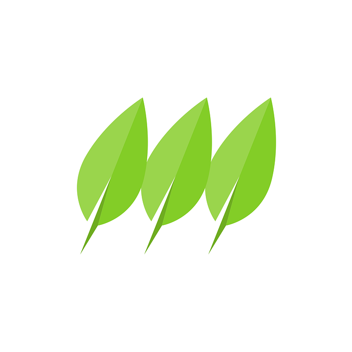 Eco, Icon, Logo, Leaf, Friendly, Green, Natural, Nature
