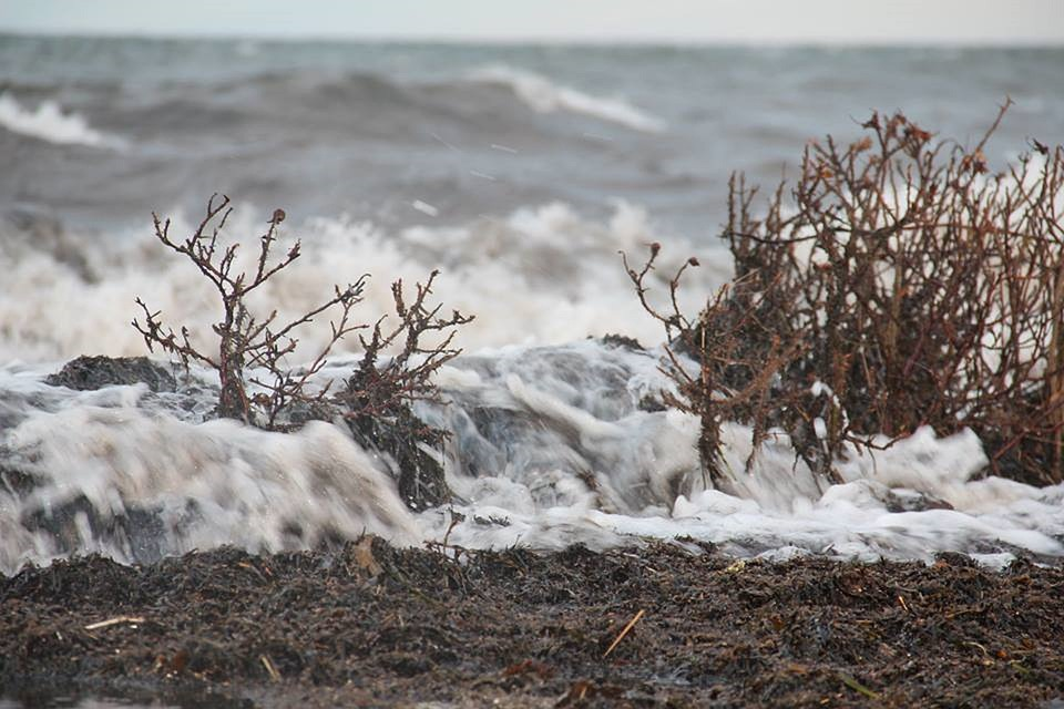 Natural, Storm Surge, Landscape, Cold, No Person