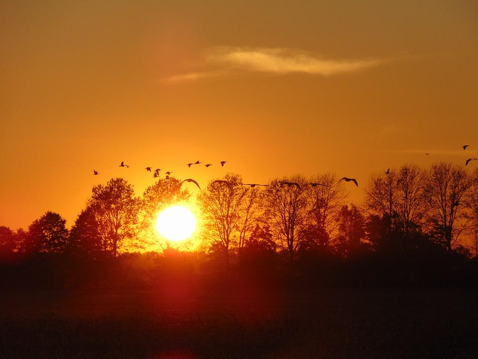 Sun, Sunset, Nature, Afterglow, Landscape