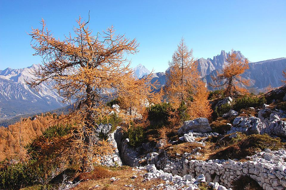 Indian Summer, Dolomites, Alm, Nature, Rock, Sky, View