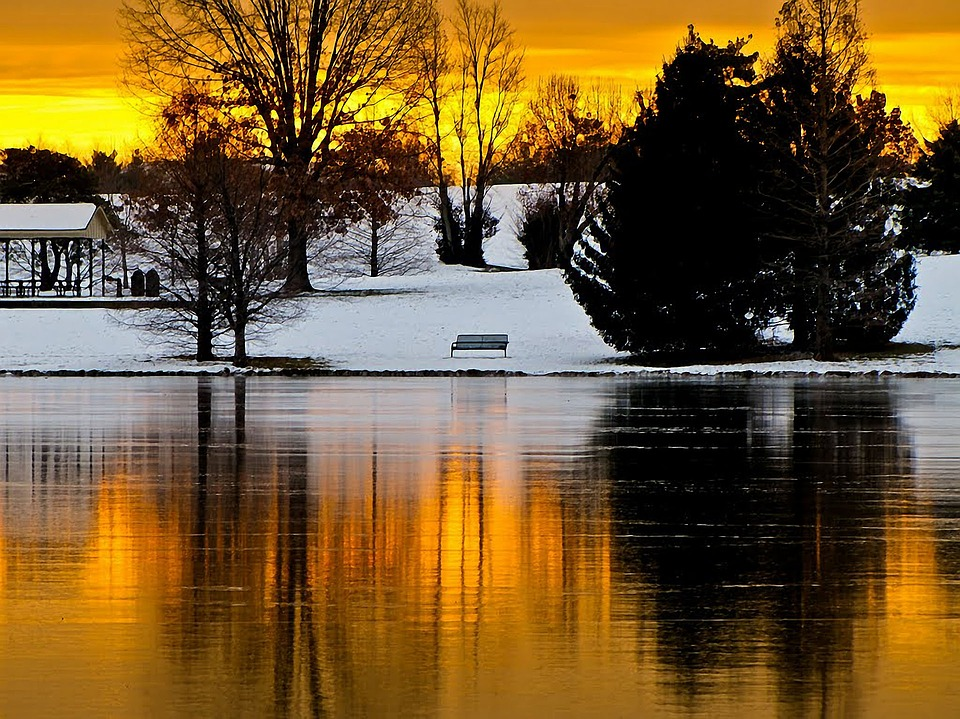 Nature, Reflection, Art, Water, Lake