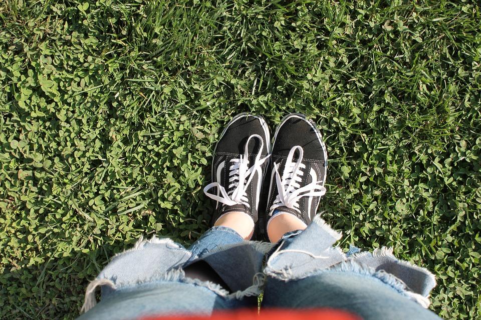 Vans, Autumn, Nature, Outside, Outlook, Grass, Green