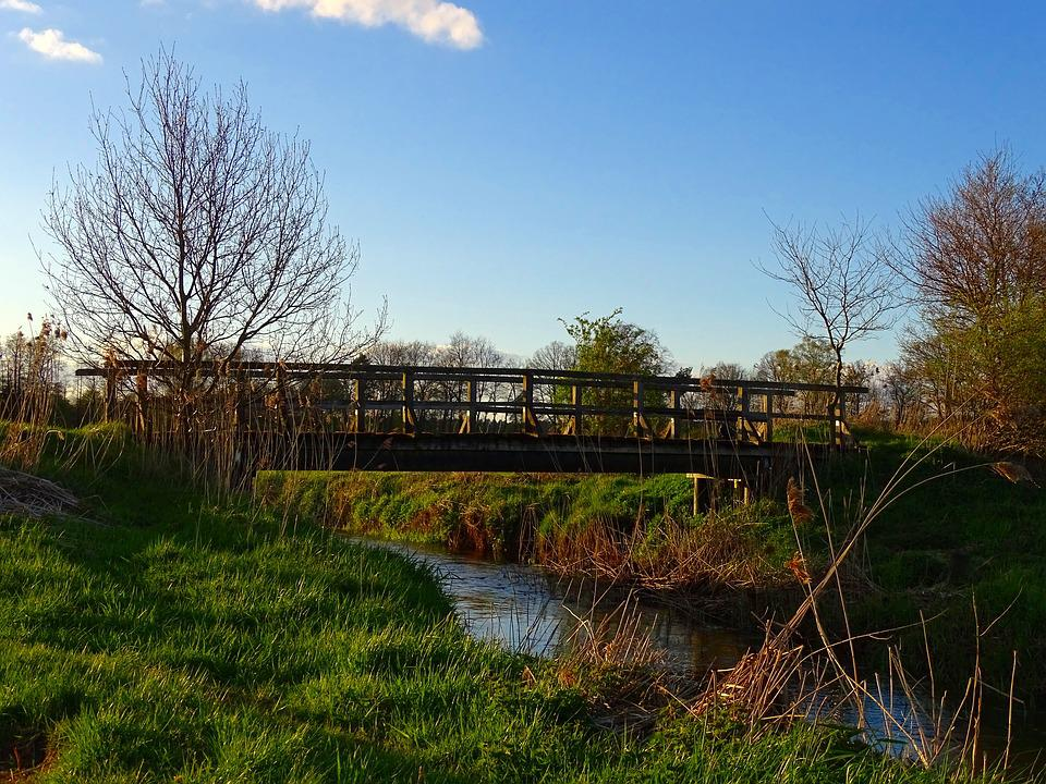 Nature, Bridge Brook, Bach, Water, Blue Sky, Landscape