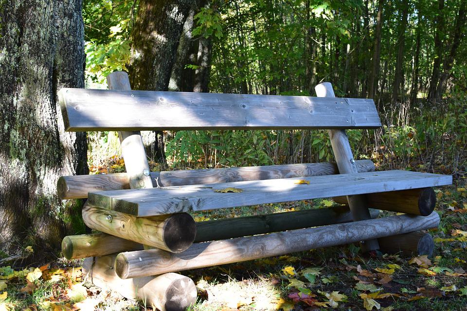 Bank, Forest, Rest, Rustic, Break, Nature, Bench