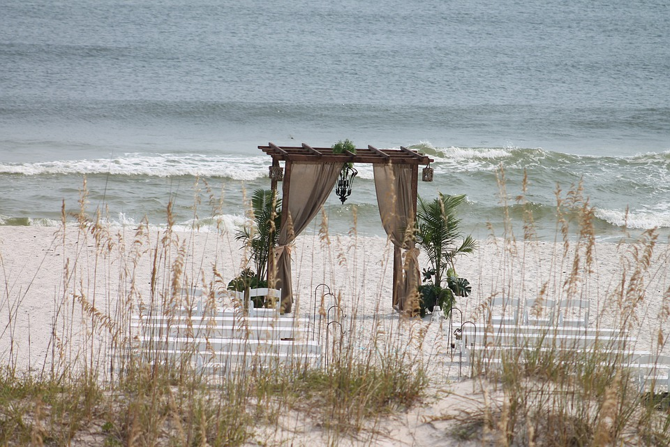 Beach, Wedding, Ornament, Decoration, Plants, Nature