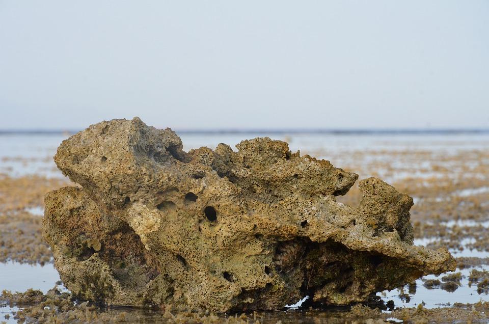 Red Sea, Pierce, Pontoon, Sea, Beautiful View, Nature