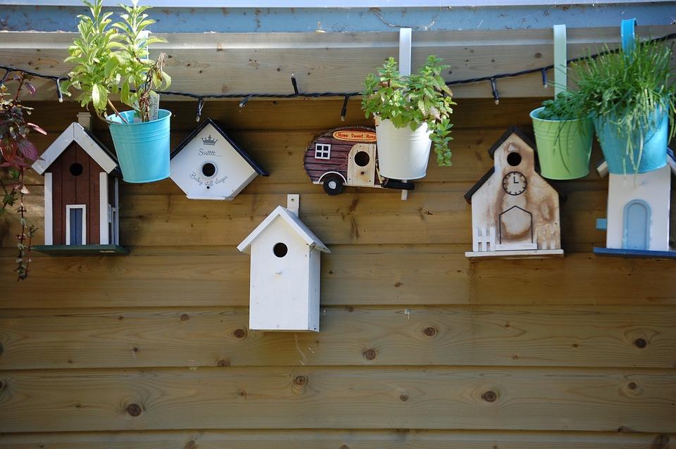 Birdhouse, Nature, Bird, Wooden House