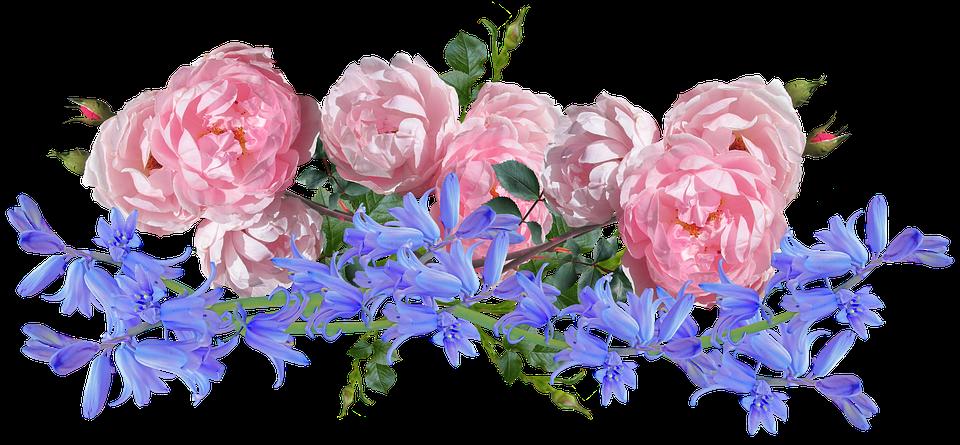 Flowers, Roses, Bluebells, Arrangement, Garden, Nature