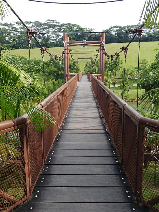 Bridge, Outdoors, Nature, Park, Relax, Wooden