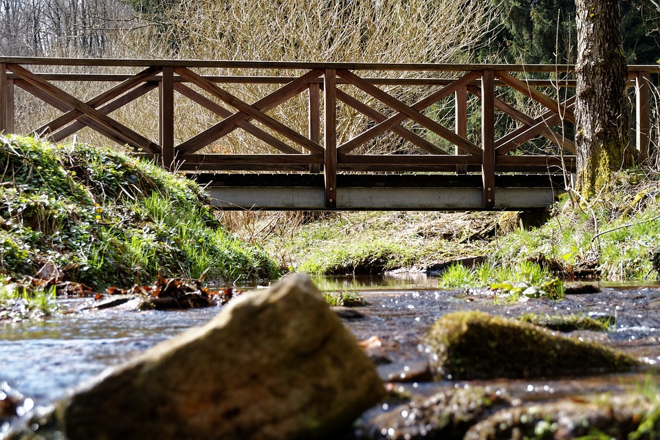 Bach, Water, Forest, Black Forest, Bridge, Nature