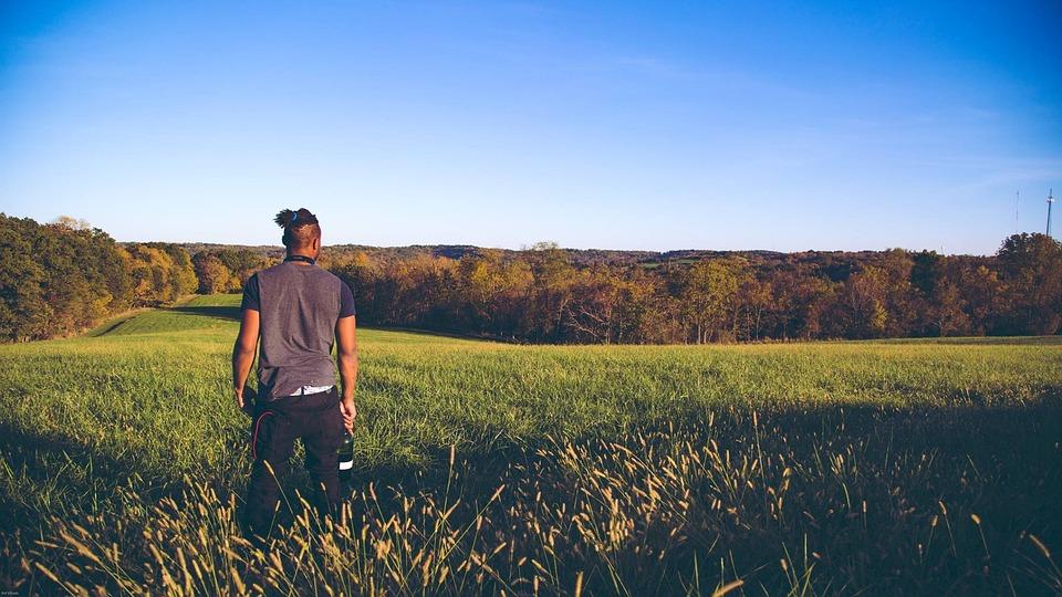 Open, Field, Wideshot, Nature, Bright, Blue