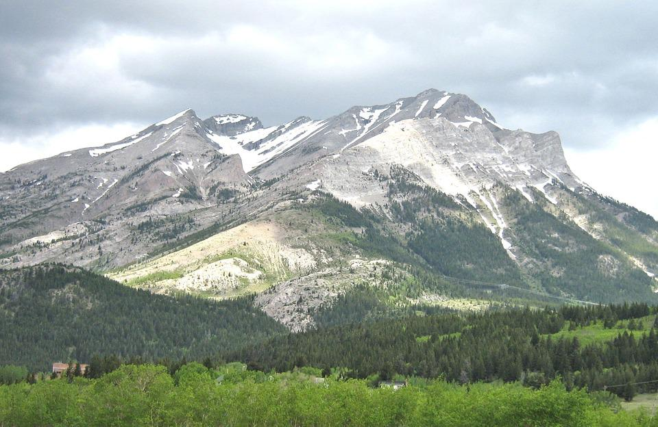 Alberta, Canada, Rocky Mountains, Meadow, Nature