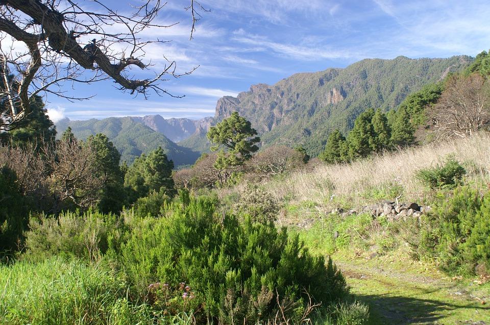 La Palma, Nature, Hiking, Canary Islands