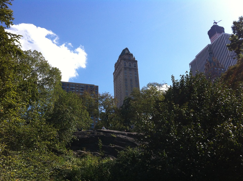 Central Park, New York, Building, Nature, Rest
