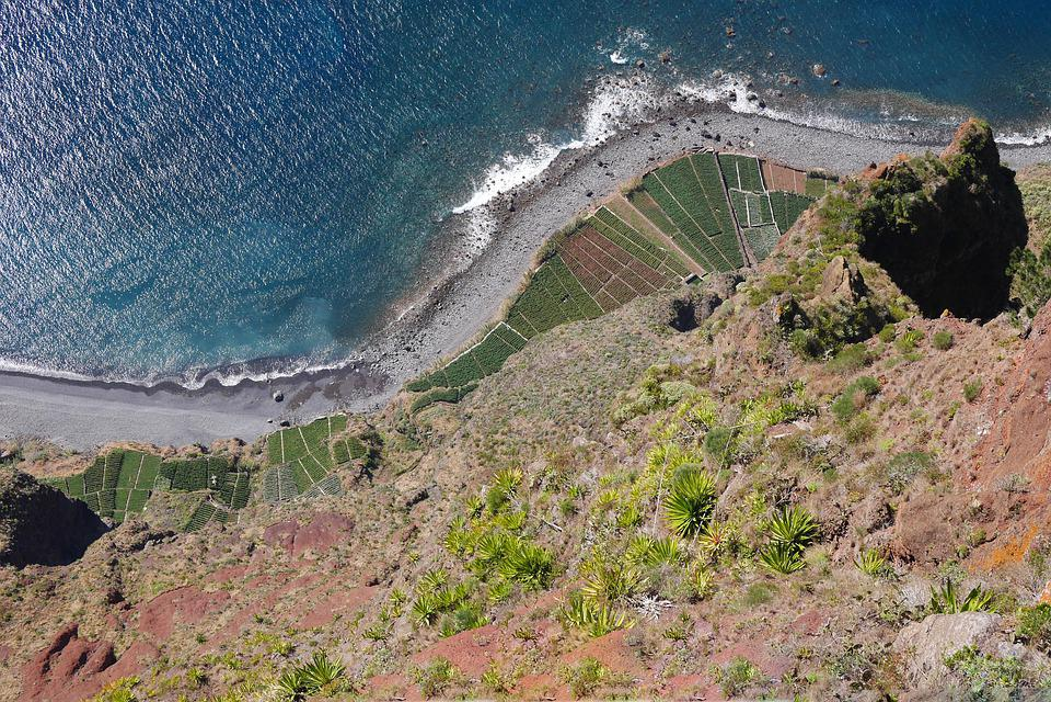 Madeira, Cliff, Sea, Nature, Rock, Atlantic