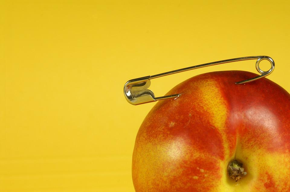Clip, Fishing, Red, Yellow, Fruit, Nature, Detail