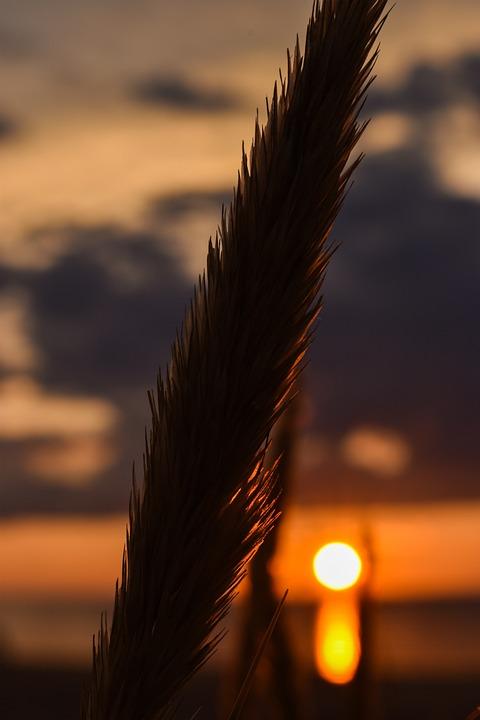 Nature, Sunset, Landscape, Sky, Evening, Dawn, Clouds