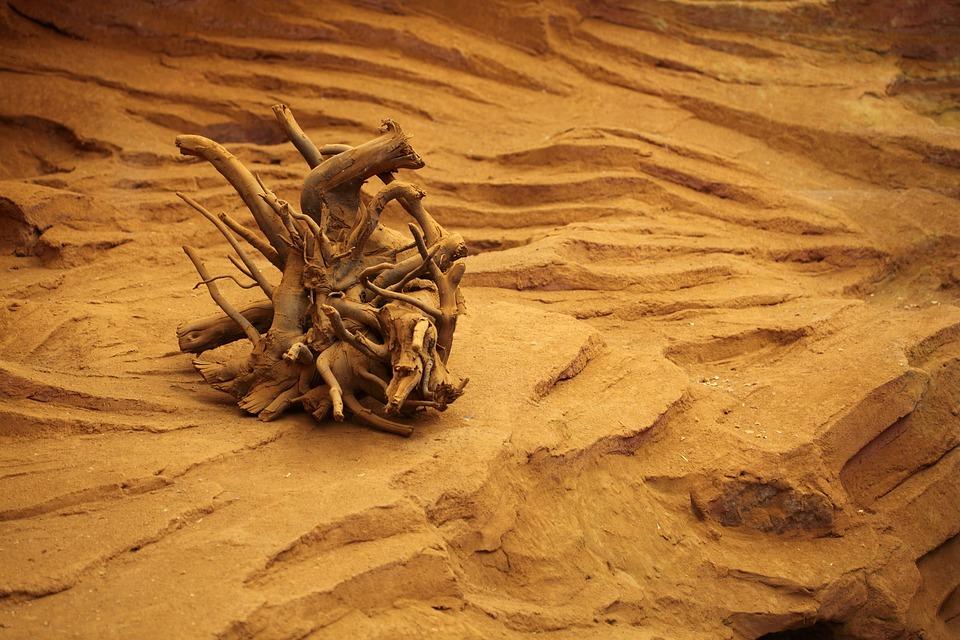 Dead, Desert, Drought, Dry, Erosion, Landscape, Nature