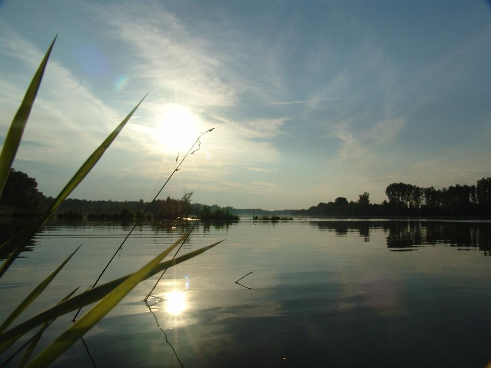 Dawn, Island, Drava, Nature, Fishing