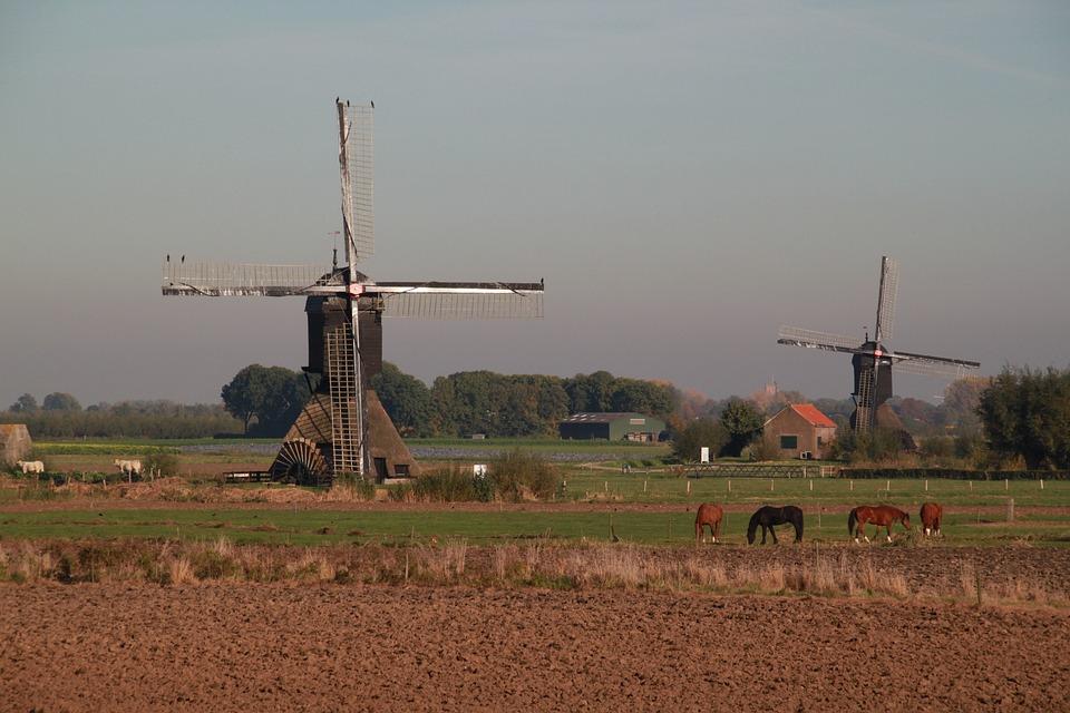 Dutch, Landscape, Mill, Nature, Dutch Landscape