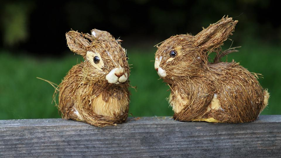 Rabbit, Nature, Animals, Charming, Easter, Rodent, Sit