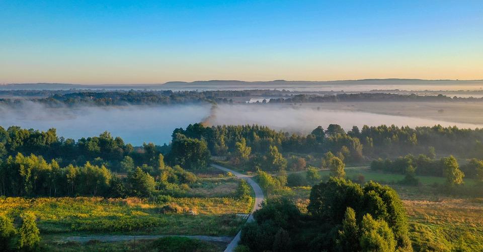 Nature, Fog, Travel, Exploration, Road, Outdoors