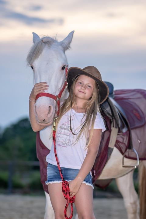 Girl, Horse, Animal, Nature, Horses, Farm, Stallion