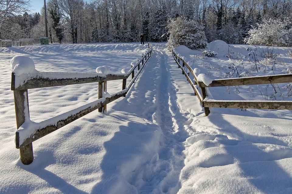 Fence, Winter, Wintry, White, Snowy, Snow, Nature