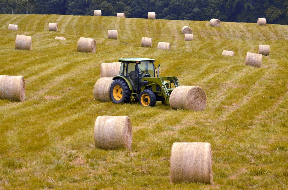 Bales, Hay, Agriculture, Nature, Field, Harvest, Straw