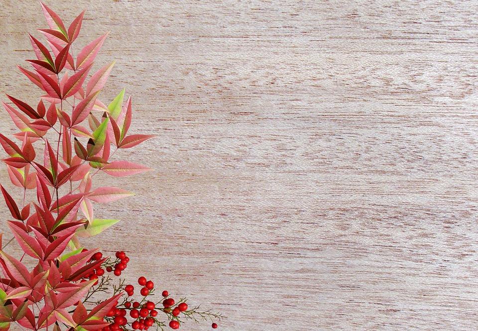 Greeting Card, Desktop, Flower, Nature, Decoration