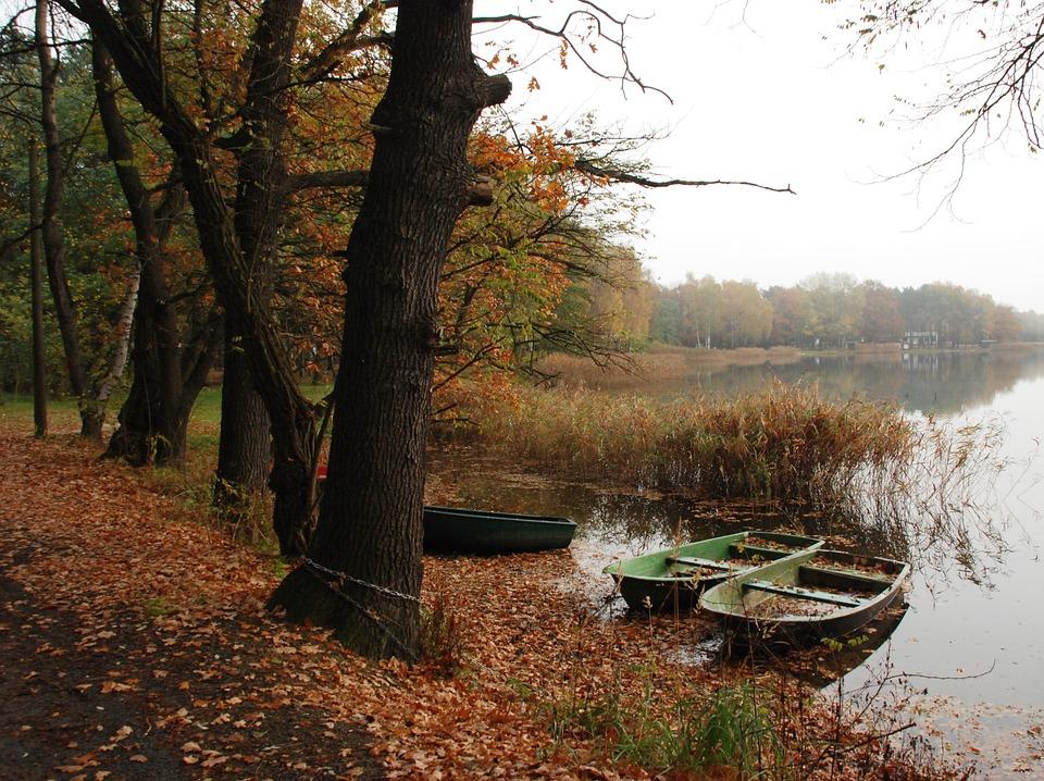 Autumn, Water, Boat, Fog, Mist, Landscape, Nature
