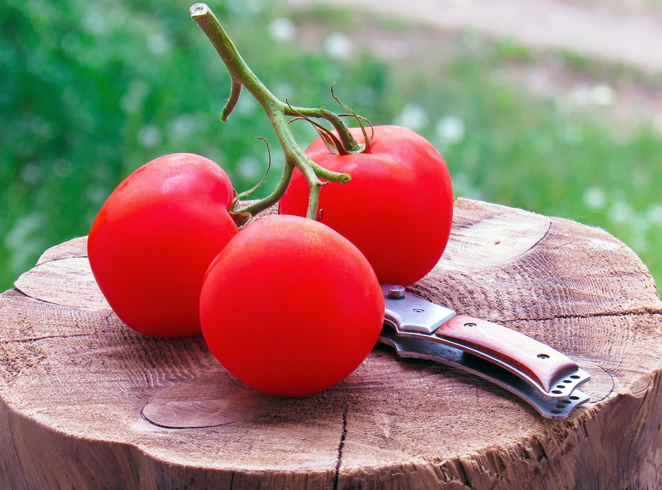 Food, Nature, Healthy, Tomato, Still Life, Nutrition