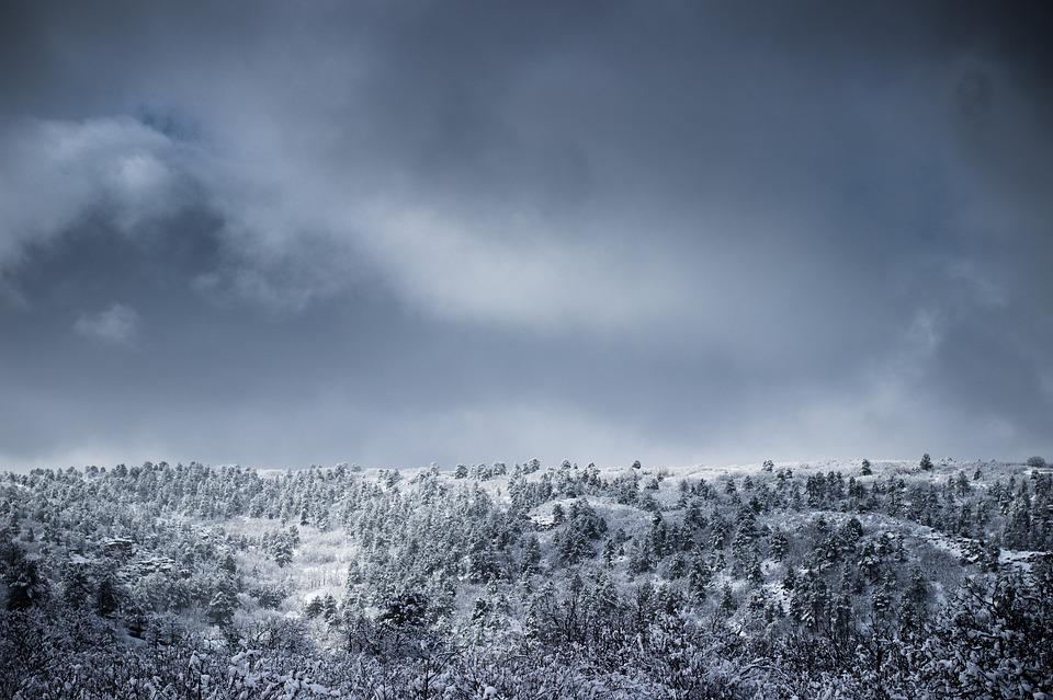 Cold, Forest, Landscape, Mountain, Nature, Sky, Snow