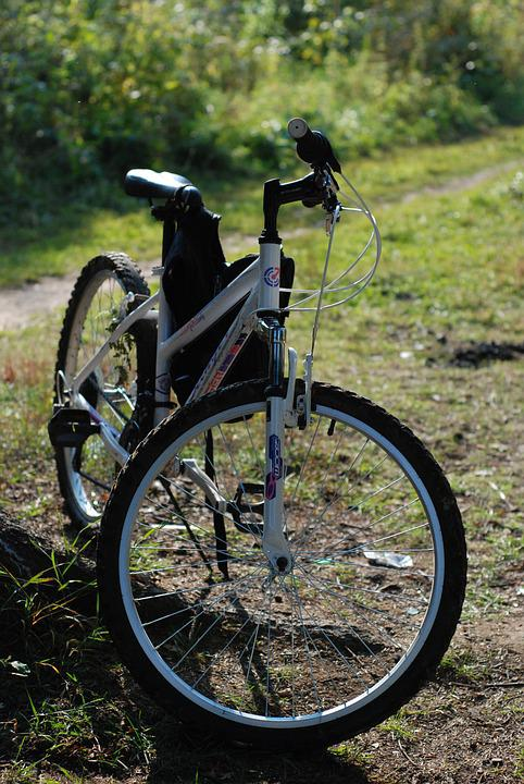 Bike, Forest, Autumn, Grass, Cross Country, Nature