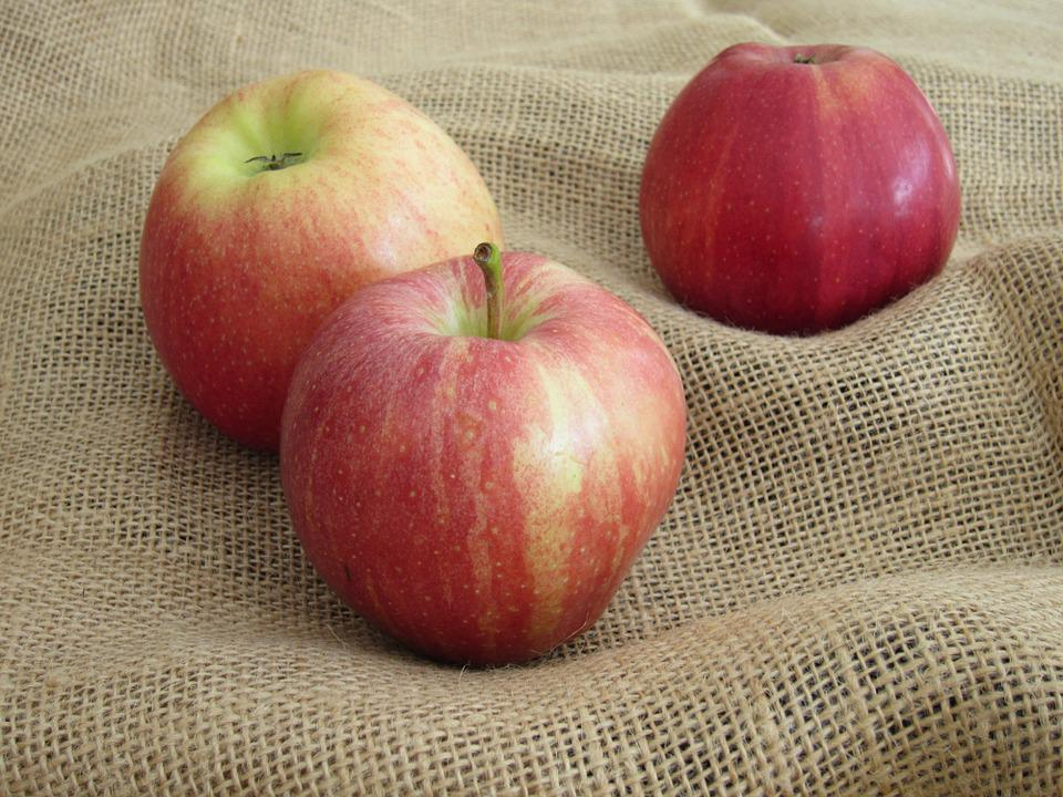 Apple, Harvest, Fruit, Autumn, Harvest Time, Nature