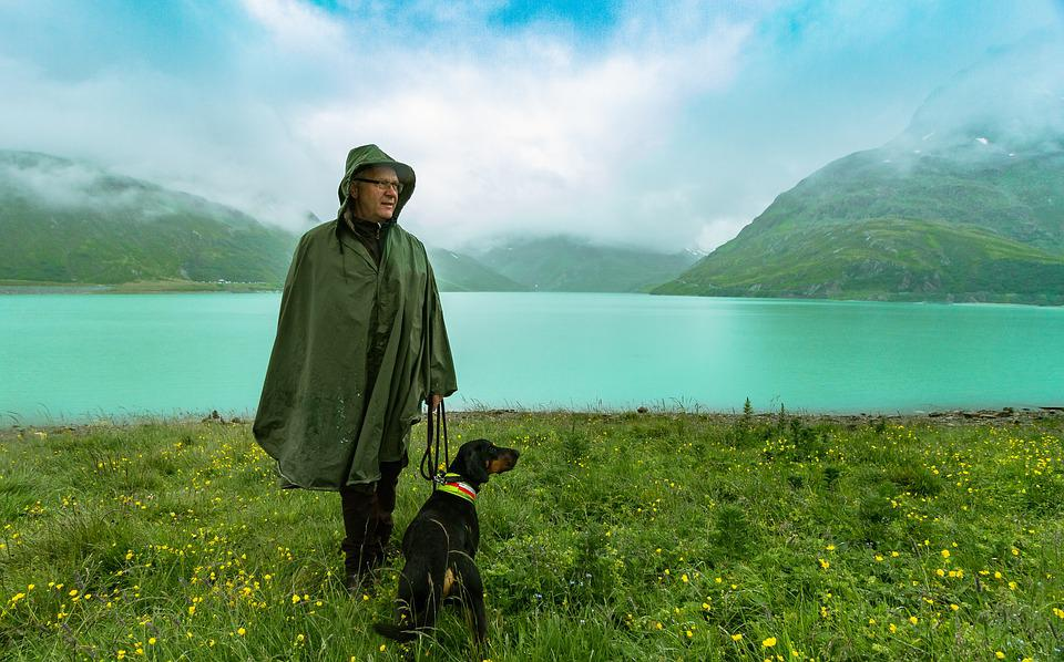 People, Dog, Lake, Landscape, German, Nature, Gabardine