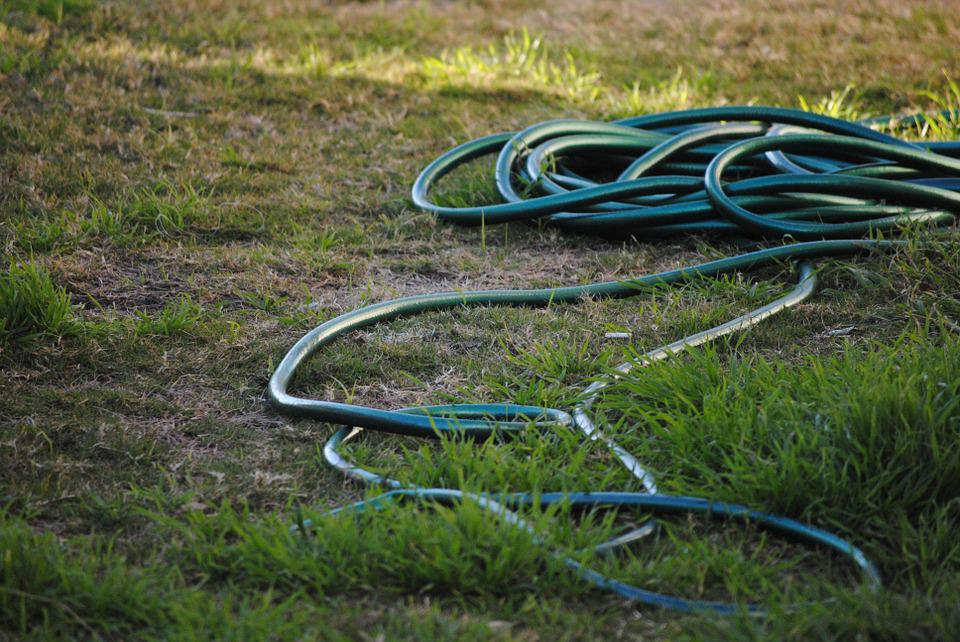 Hose, Grass, Garden, Green, Nature, Water, Summer, Lawn