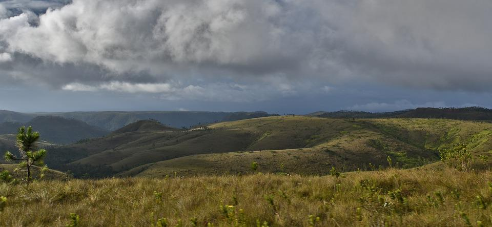 Mountain's, Belize, Grass, Panoramic, Nature, Landscape