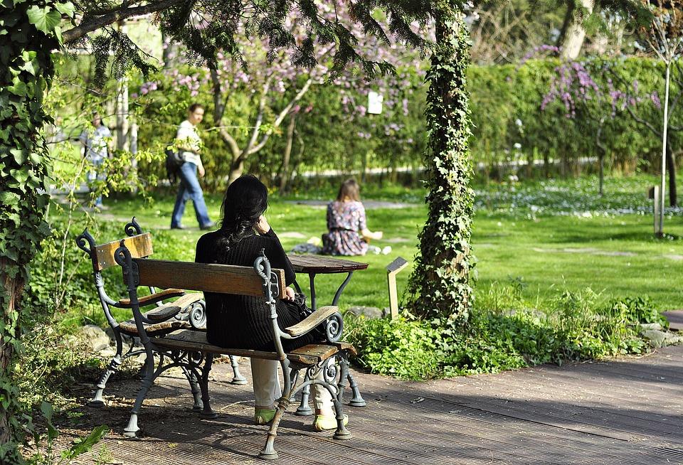 Park, Pad, Spring, Nature, Green, Serenity