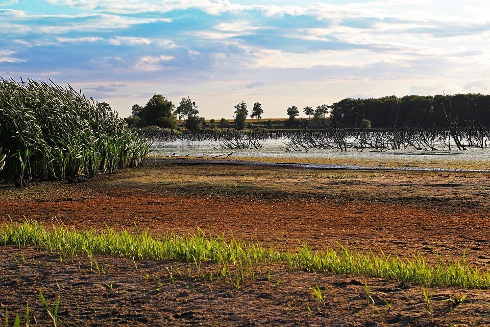 Protected Landscape Area, Hatchery, Nature